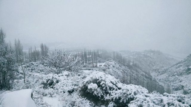 گوجال، برفباری