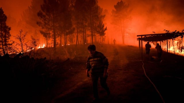 Portugal wildfires: Huge blazes force evacuations