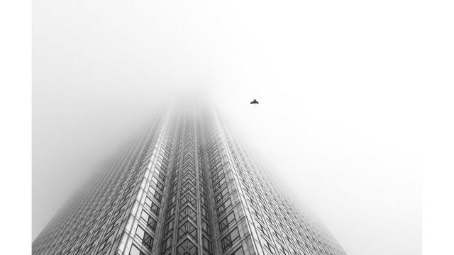 Un ave pasa junto a un rascacielos de Londres.