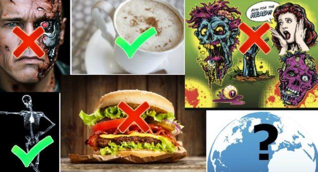 Una foto que combina las preferencias de la Reina de los robots mierdosos, incluidos Terminator, café latte, películas de terror, hamburguesas, visión de rayos X