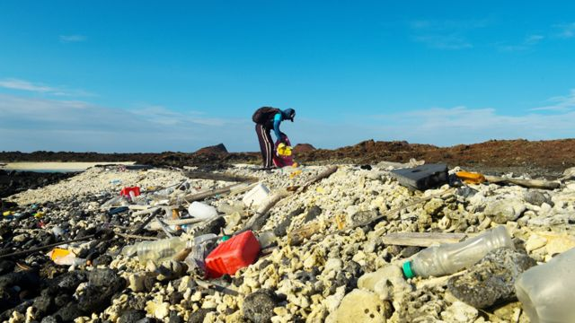 Voluntario juntando basura plástica en la isla Isabela