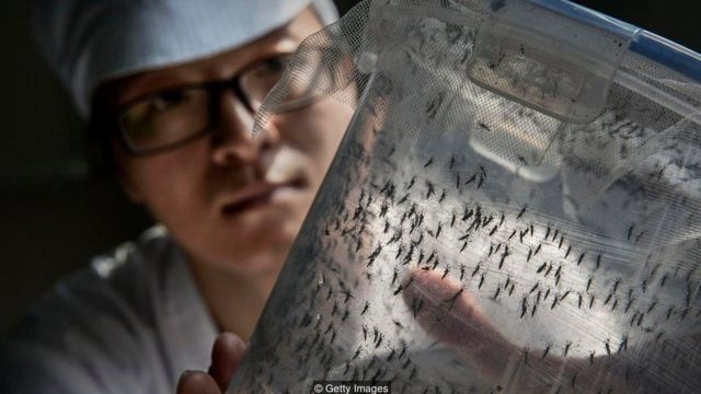 It's crucial to have vaccines ready to fight the next global epidemic — be it Zika, Ebola, or a new disease