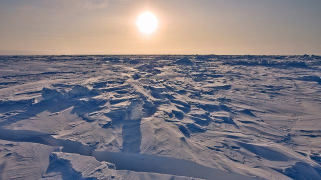 Hielo marino en el Ártico