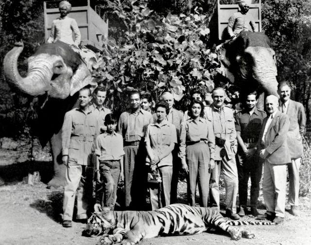 Fotos do casal real em uma caça a um tigre na Índia em 1961, com a companhia de caça e um tigre morto na frente