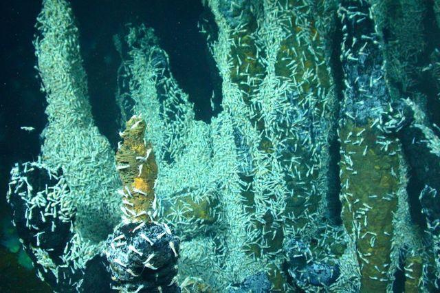 Dünya'daki okyanus tabanlarında bulunan hidrotermal bacalar