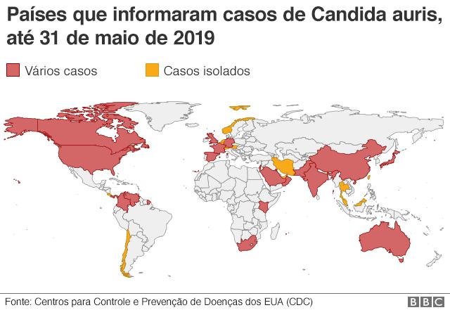 Candida auris: cientistas mapeiam avanço de 'superfungo' resistente a  medicamentos - BBC News Brasil