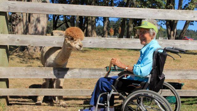 Norma Bauerschmidt meets an alpaca