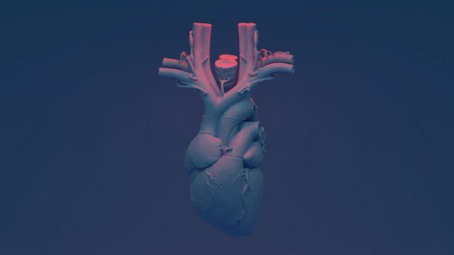 Ilustração gráfica do coração