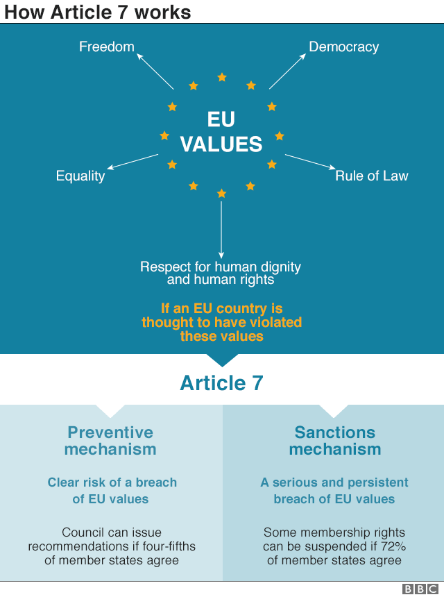 Graphic on Article 7