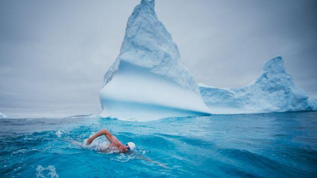 ピューさんは南極海を泳いでロス海のMPA指定を訴えた
