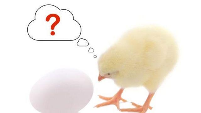 अंडा या मुर्गी... क्या आया पहले