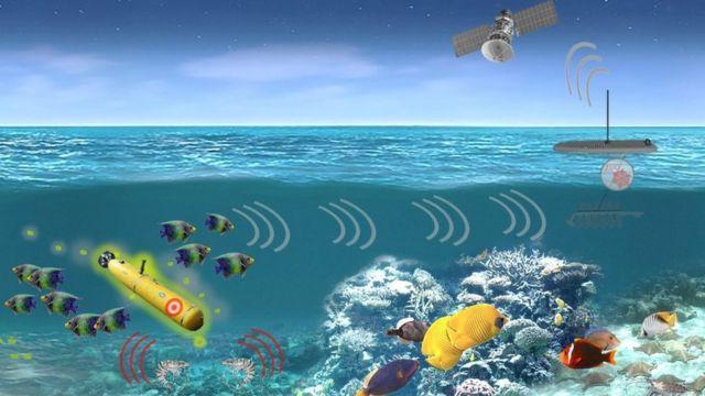 Um esquema de como o sistema de sensores marítimos pode funcionar