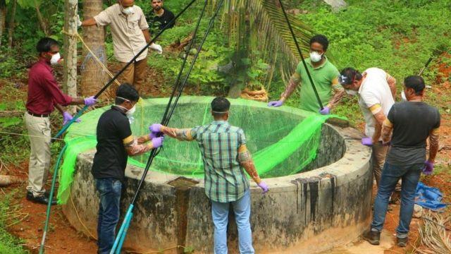 கோழிக்கோட்டில் பழந்தின்னி வௌவால்கள் இருக்கும் கிணற்றை ஆய்வு செய்யும் கால்நடைத்துறை அதிகாரிகள்