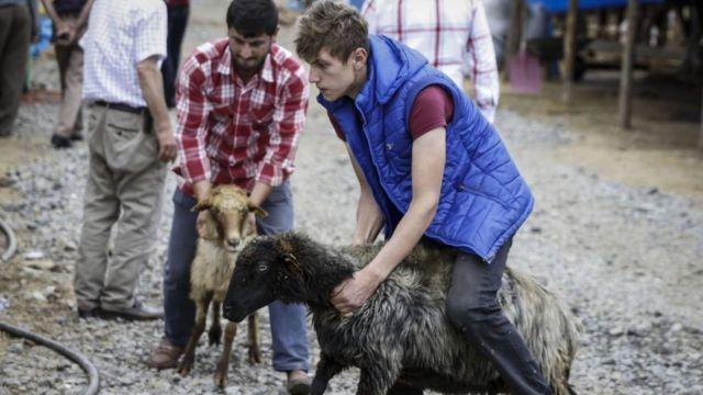 Bir hayvan pazarında çalışan bir genç