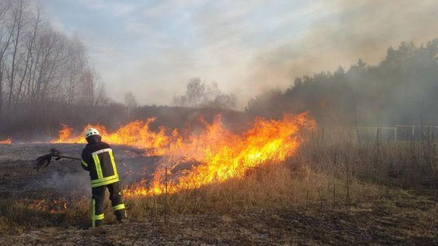 "Кожної весни я задихаюся"": в Україні знову горять ліси, поля та очерети -  BBC News Україна"