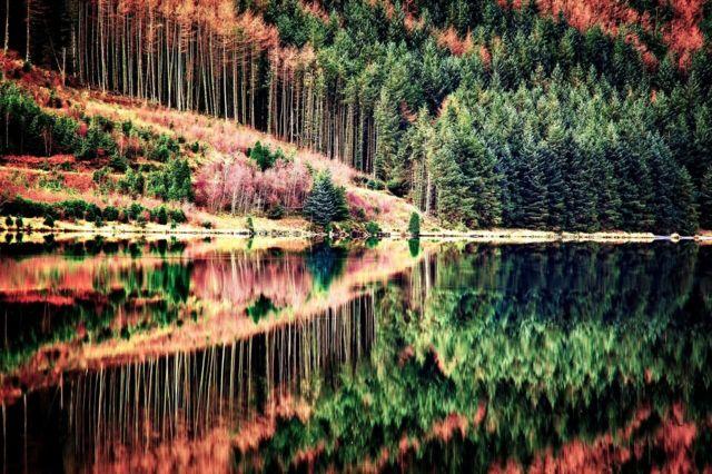 Eryri yn yr hydref // Snowdonia in autumn