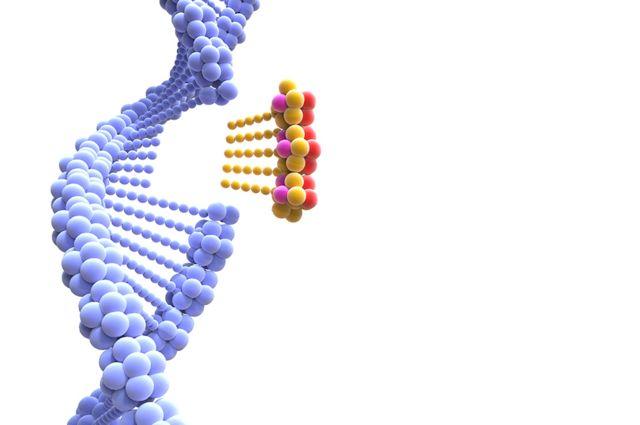 Imagen de una edición genética