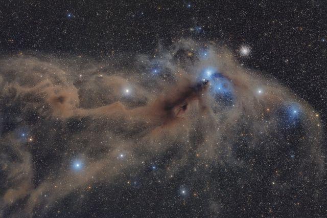 '남쪽 왕관자리의 먼지 덩어리(Corona Australis Dust Complex)'