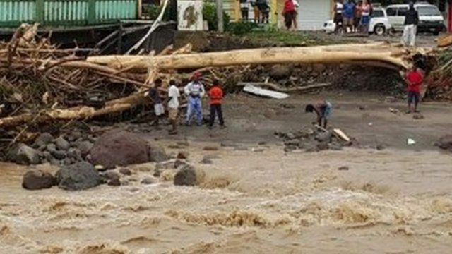 Fallen tree and floodwaters in Dominica