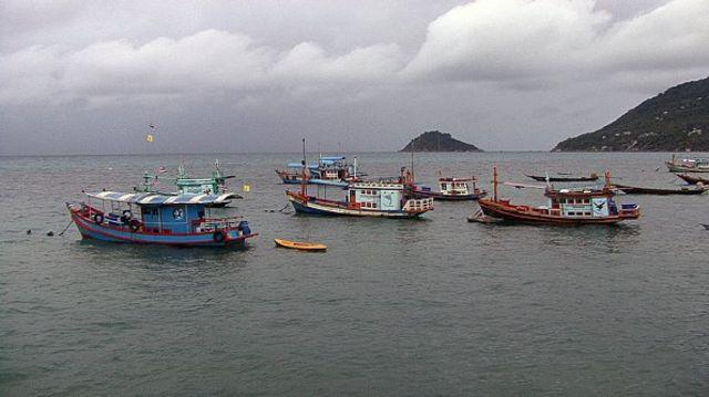 เรือประมงในทะเล