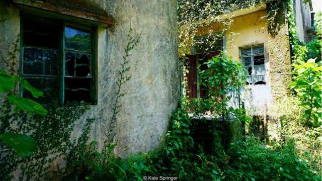 Yim Tin Tsai was once home to a thriving Hakka community