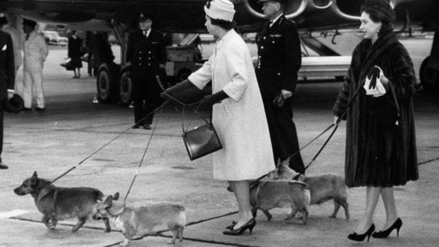 資料圖片:姐妹倆1962年10月19日遛狗。