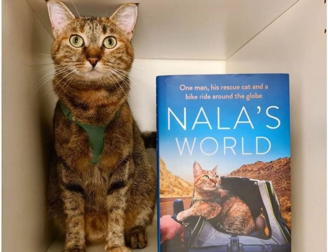Nala's book