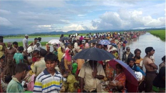 রোহিঙ্গা, মিয়ানমার, বাংলাদেশ