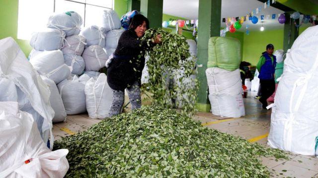 Una mujer esparce hojas de coca en un mercado de La Paz, Bolivia