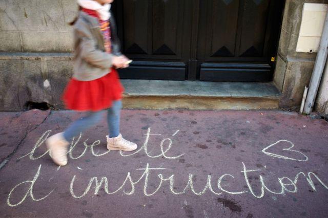 طفلة خلال تظاهرة في مدينة تولوز الفرنسية - نوفمبر 2020