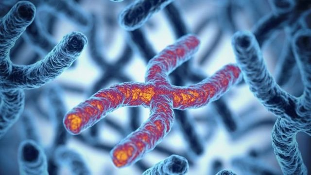 เราอาจจะใช้ควอนตัมคอมพิวเตอร์ค้นหาโมเลกุลที่รักษาโรคทางพันธุกรรมได้
