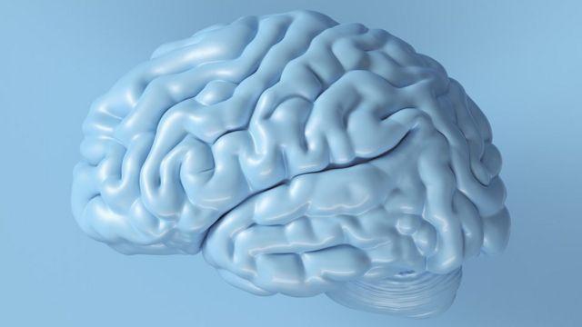 افراد پس از آموزش ذهن خود افراد مقدار کالری کمتری خوردند