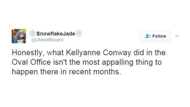 """Юзер SnowflakeJade: """"Чесно кажучи, те, що зробила Келліенн Конуей в Овальному кабінеті, - це не найгірша річ, яка тут сталася за останні місяці"""""""
