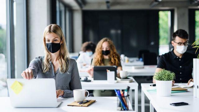 Trabajadores con sus mascarillas trabajando en sus laptops.