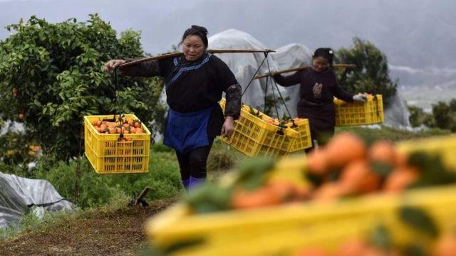 """中国脱贫创造""""人间奇迹"""" 三个关键数据透露的玄机(photo:BBC)"""