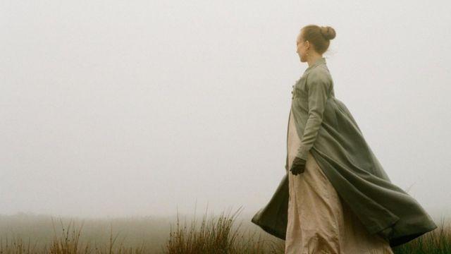 我们从艾米莉的诗歌和散文中发现,大自然给她带来了极大的情感愉悦。
