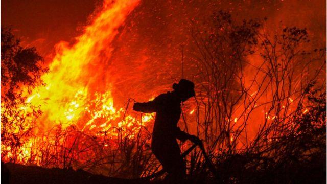 Kebakaran hutan: Argumen Malaysia-Indonesia soal asap berujung ke mana? -  BBC News Indonesia