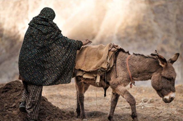 खेतों में काम करती महिला