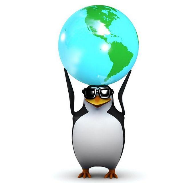Pingüino con gafas de sol