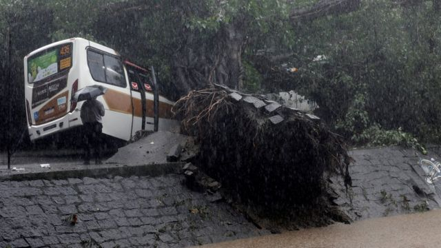 A bus is left destroyed by a fallen tree