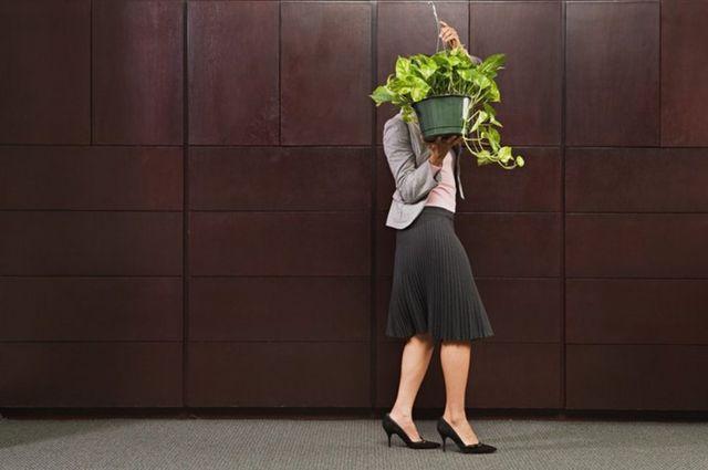 Una ejecutiva cargando una planta, con la cual se tapa la cara