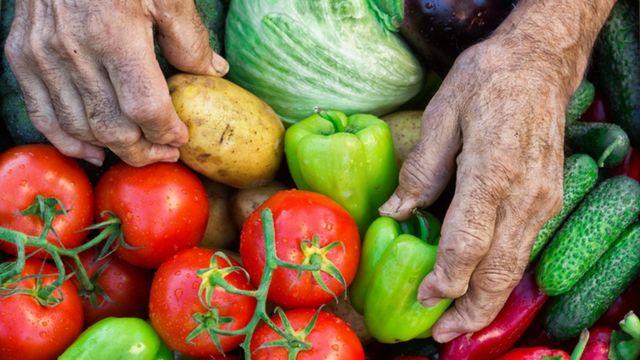 Dia Mundial De La Alimentacion Por Que Quienes Producen Comida Son Los Que Mas Hambre Padecen Bbc News Mundo
