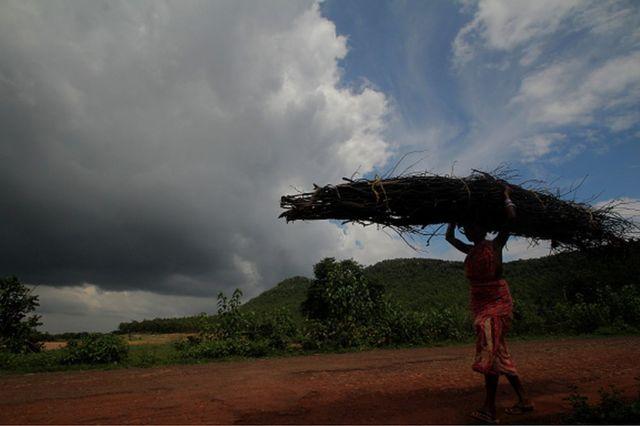 Une villageoise transporte du bois de chauffage en rentrant chez elle après l'avoir ramassé dans une forêt voisine pour l'utiliser comme combustible de cuisson à la périphérie de la ville de Bhubaneswar, dans l'est de l'Inde, le 30 juin 2020
