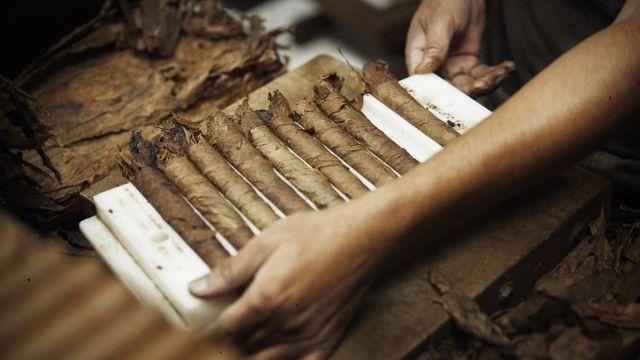 Producción manual de puros.