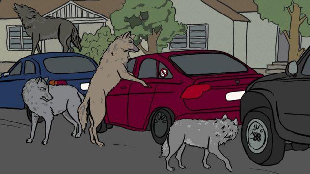 Ilustração de motoristas do Uber cercadas por lobos