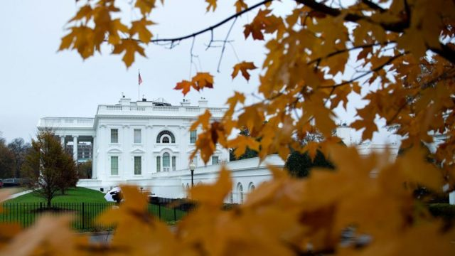 White House with leaves