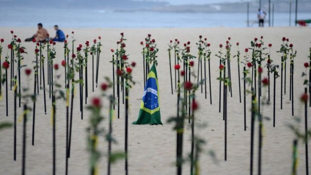 Bandeira do Brasil no meio de rosas fincadas na areia da praia