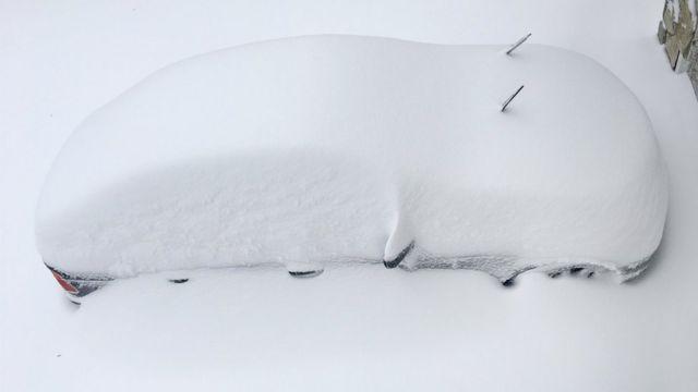 ワシントン近郊のバージニア州アナンデールでも路上駐車の車はすっぽり雪に埋まった(23日)