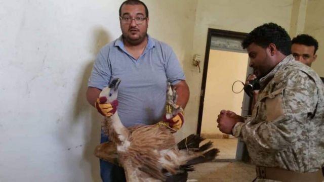 هشام الحوت برای نجات نلسون تلاش بسیاری کرد