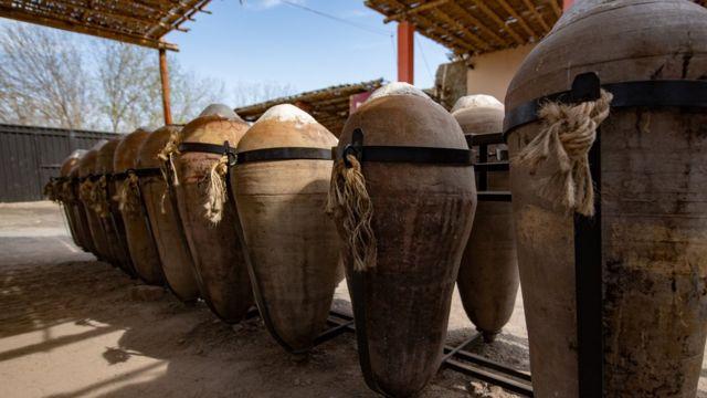 Pisco vineyard in Peru.